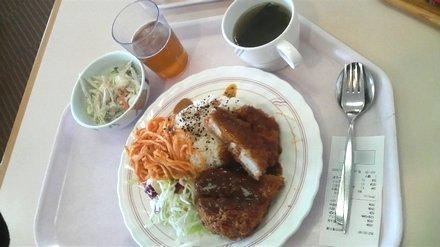 2008年11月20日の昼食
